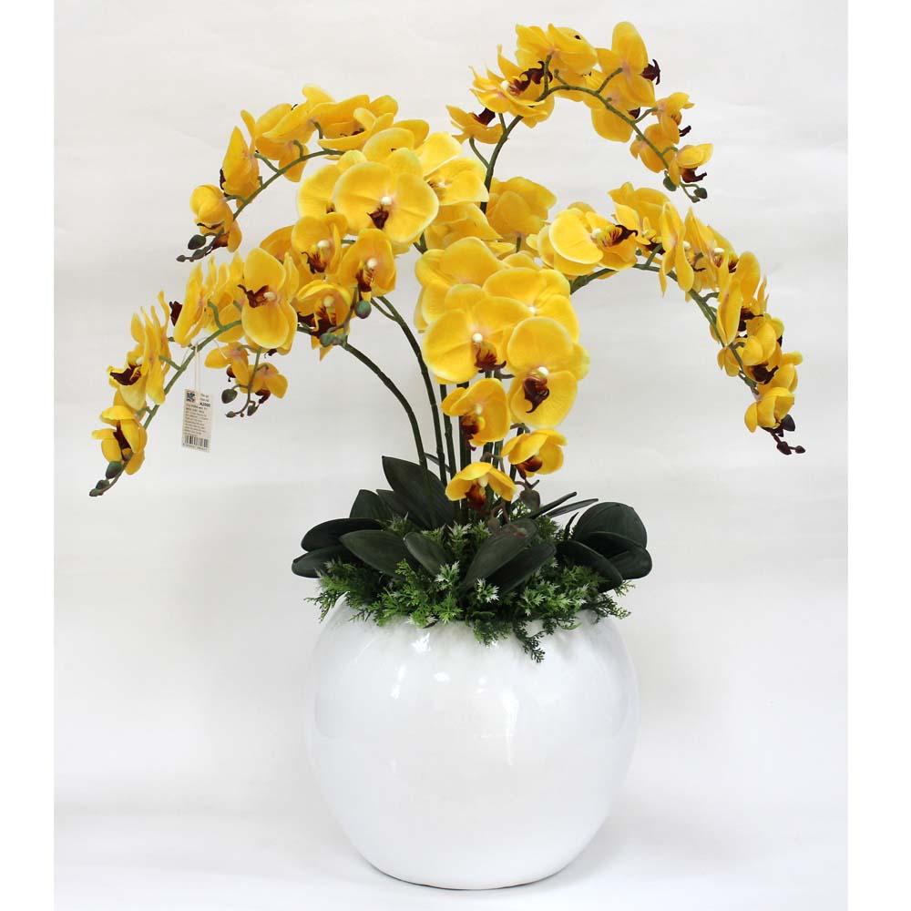 Hoa hồ điệp vàng đối xứng tạo vẻ đẹp sang trọng